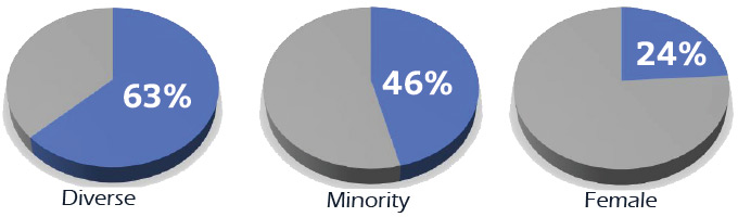 Diversity: Employee New Hire Populations
